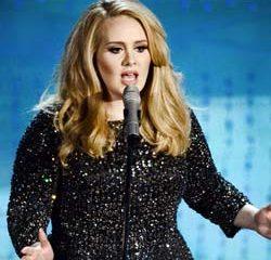 Adele pique une grosse colère contre une fan 15