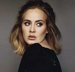 Adele stop son concert pour regarder le match de foot 13