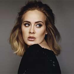 Adele stop son concert pour regarder le match de foot 5