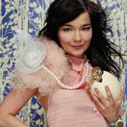 Björk débarque dans les festivals d'été 5