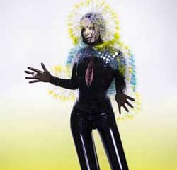 Björk <i>Vulnicura</i> 11