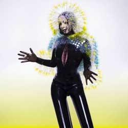 Björk <i>Vulnicura</i> 5