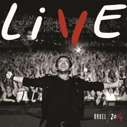 Patrick Bruel sort le témoignage live de sa tournée 2014 5