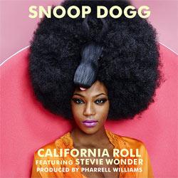 SNOOP DOGG & STEVIE WONDER 5