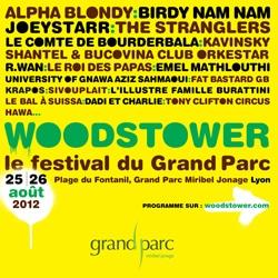 Woodstower 2012 5