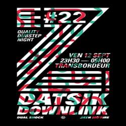 Datsik et Downlink en concert à Lyon 5