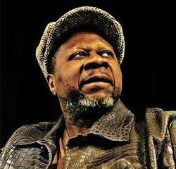 Mort en plein concert du chanteur Papa Wemba 16