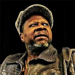 Mort en plein concert du chanteur Papa Wemba 5