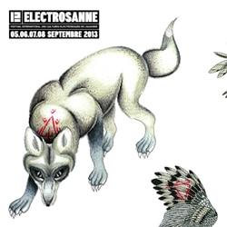 Electrosanne 2013 5