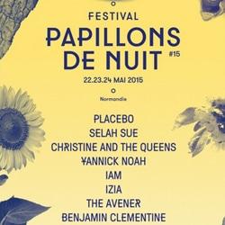 Festival Papillons de Nuit 2015 6