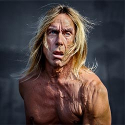 Le nouvel album d'Iggy Pop sort le 18 mars 2016 6