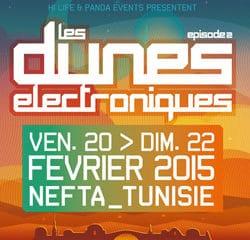 Les Dunes Electroniques 2015 12
