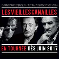 Le concert des Vieilles Canailles en direct sur TF1 6