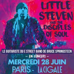 Le guitariste de Bruce Springsteen en concert à la Cigale 5