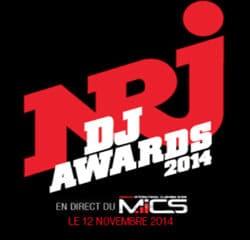 Pluie de stars aux NRJ DJ Awards 2014 14