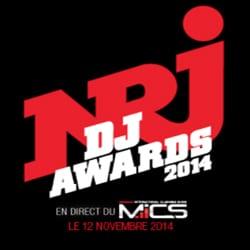 Pluie de stars aux NRJ DJ Awards 2014 6