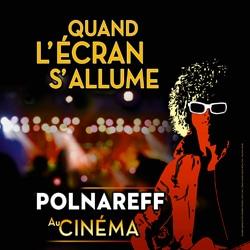 Affiche Michel Polnareff au cinéma