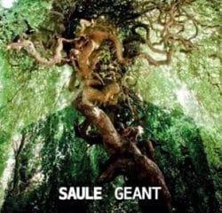 SAULE Géant 14