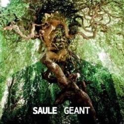 SAULE Géant 5