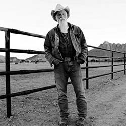 Seasick Steve : Keepin' The Horse Between Me And The Ground 5