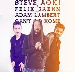 Steve Aoki invite Felix Jaehn et Adam Lambert sur un titre 8