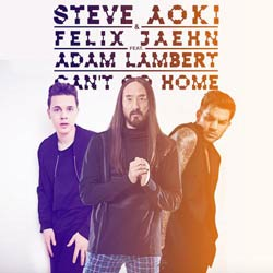 Steve Aoki invite Felix Jaehn et Adam Lambert sur un titre 5