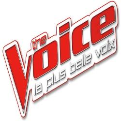 The Voice 4 : C'est la finale ! 5