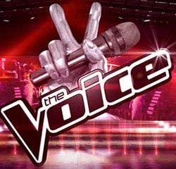 The Voice fait un carton sur TF1 11