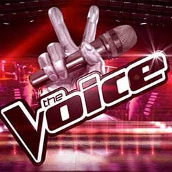 The Voice fait un carton sur TF1 6