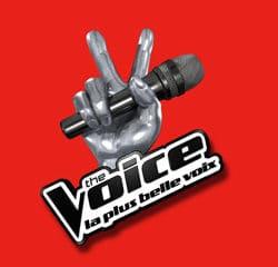 The Voice 3 : Les nouveautés 2013 21