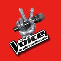 The Voice 3 : Les nouveautés 2013 5