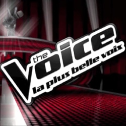 Le jury de The Voice enfin dévoilé ! 5