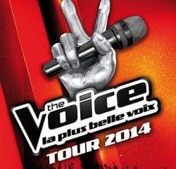 La tournée The Voice accueille les talents des saisons précédentes