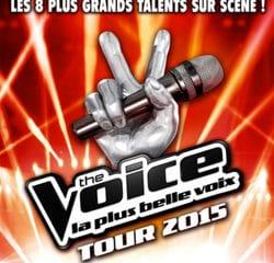 The Voice Tour 2015 : les dates dévoilées ! 5