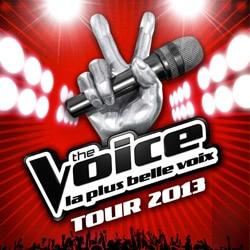 Les stars de The Voice en tournée 5