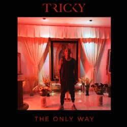Tricky révèle un nouveau single <i>The Only Way</i> 5
