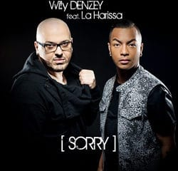 WILLY DENZEY Sorry 14