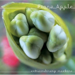 Fiona Apple Extraordinary machine 7
