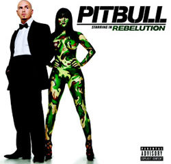 Pitbull revient avec un nouvel album 20