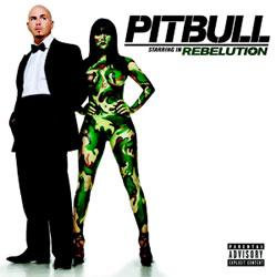 Pitbull revient avec un nouvel album 5