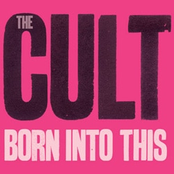 The Cult 6