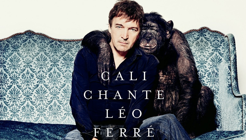 Cali de retour avec un album hommage à Léo Ferré