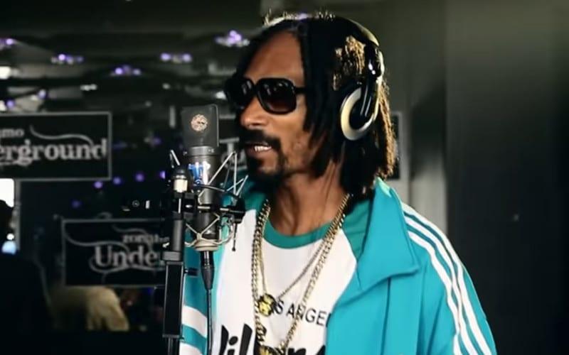Snoop Dogg berceuses pour enfants