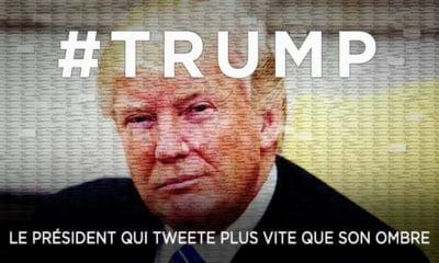 Trump : Le président qui tweete plus vite que son ombre